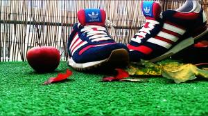 adidas zx marcin Paco  Cha
